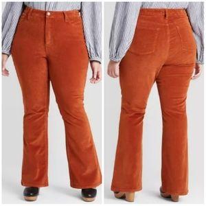 High-Rise Skinny Bootcut Orange Corduroy Plus Size